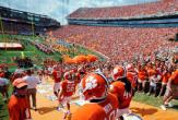 Tigers Enter Death Valley