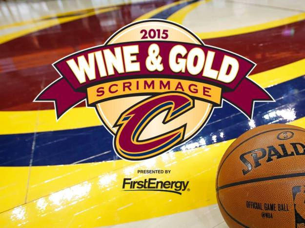 Wine and Gold Scrimmage Log